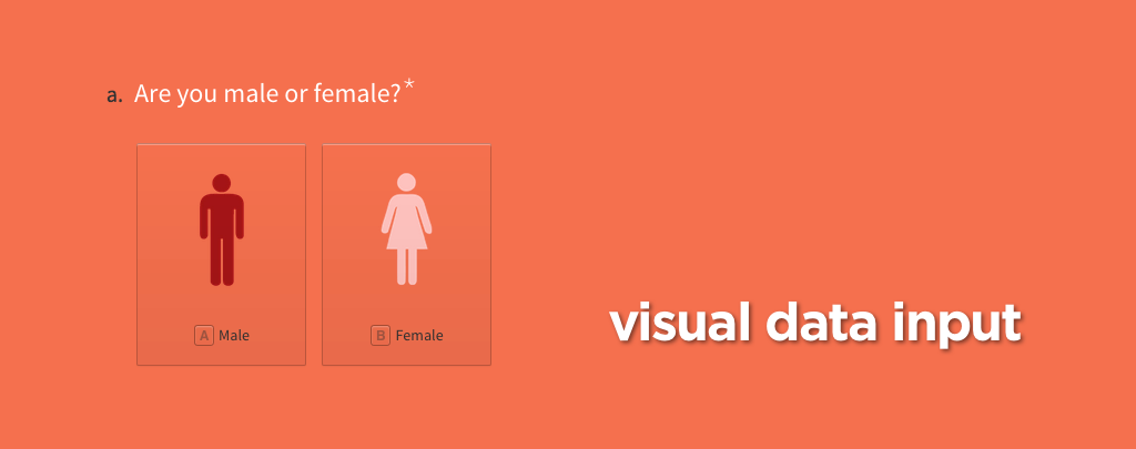 visual data input